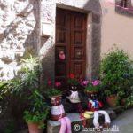"""""""Peperino in fiore"""", un magnifico viaggio tra fiori, pietra lavica e tanto altro a Vitorchiano 1"""