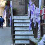 """""""Peperino in fiore"""", un magnifico viaggio tra fiori, pietra lavica e tanto altro a Vitorchiano 5"""