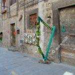 """""""Peperino in fiore"""", un magnifico viaggio tra fiori, pietra lavica e tanto altro a Vitorchiano 9"""