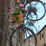 """""""Peperino in fiore"""", un magnifico viaggio tra fiori, pietra lavica e tanto altro a Vitorchiano 11"""