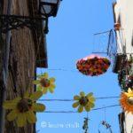 """""""Peperino in fiore"""", un magnifico viaggio tra fiori, pietra lavica e tanto altro a Vitorchiano 19"""